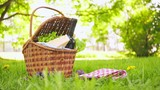 Wicker picnic basket with cheese and wine on red checkered table cloth on grass in park - 207941802