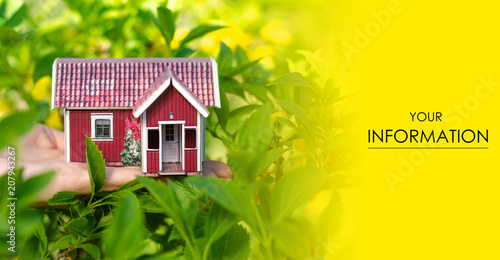 Plexiglas Geel Small house in hand sun leaves plant green nature pattern on blurred background