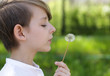 portrait of a blond boy outdoors blowing a dandelion on a summer day