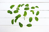 Green pepper mint leaves on a white table. - 207946288