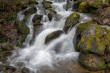 Water Rushing Over Mossy Boulders - 208006229