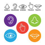 Set of icons of the five human senses. - 208017003