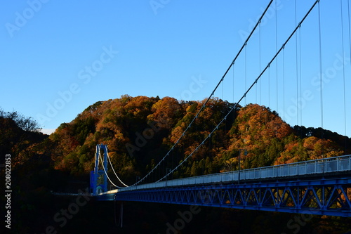 Fotobehang Herfst ryujin large suspension bridge