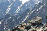 Climbers on Lomnicky peak,, High Tatras, Slovakia