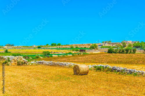 Canvas Honing Countryside on Malta