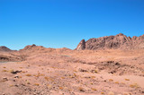 desert landscape, mountains of red sandstone, a plain covered with rare desert vegetation, a stretch of road with telegraph poles against the background of a cloudless blue sky - 208042086