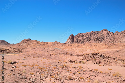 Canvas Zalm desert landscape, mountains of red sandstone, a plain covered with rare desert vegetation, a stretch of road with telegraph poles against the background of a cloudless blue sky