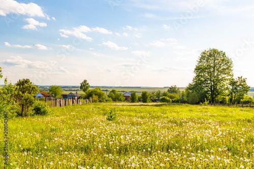 Canvas Honing rural landscape in Chuvashia