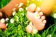 Sommerzeit - Kinderfüße im Gras mit Gänseblümchen
