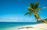 Tropical island beach. Perfect vacation background. - 208047231