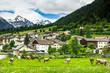 Leinwanddruck Bild - Cow pasture and Alps in background of Mustair village,Switzerland