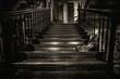 das Schweigen der Treppe