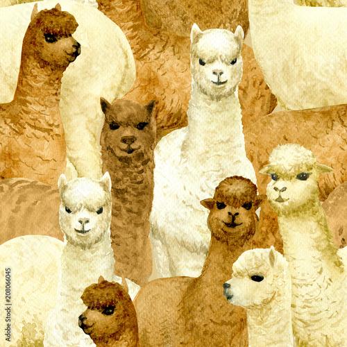 alpaca-seamless