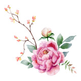 Watercolor vector hand painting illustration of peony flowers and green leaves. - 208068084
