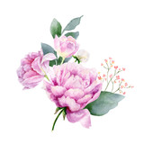 Watercolor vector hand painting illustration of peony flowers and green leaves. - 208068279