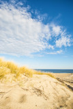 beach of the Baltic sea with beach grass and park bench in back light