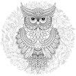 Coloring page with cute owl and floral frame. - 208090226