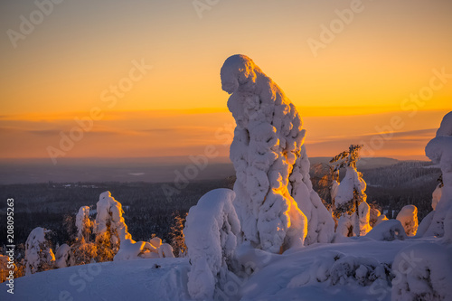 Canvas Honing Winter sunset landscape from Sotkamo, Finland.