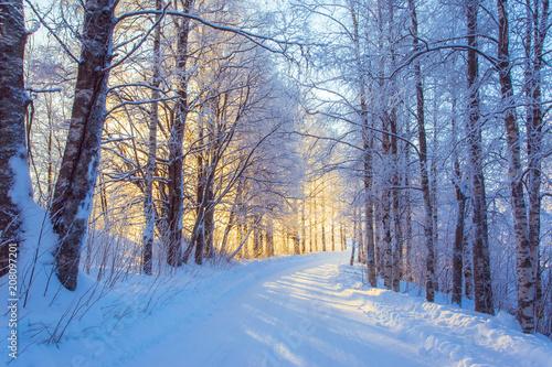 Fototapeta Snowy road scene from Sotkamo, Finland.