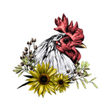 head of the rooster in profile with wreath in the form of a frame of sunflower leaves and dry grass from below, sketch vector graphics color illustration