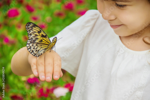 Foto Murales Child with a butterfly. Idea leuconoe. Selective focus.