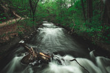 Fast flowing river through forest with debris in the foreground
