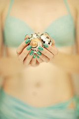 Beautiful woman hands with perfect nail polish holding little sea shell, summerly beach mood, can be used as background