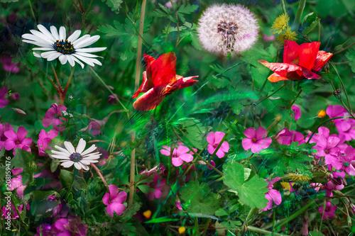 ensemble de fleurs sauvages et colorées dans les herbes vertes