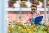 Young woman entrepreneur working in flower garden - 208170646
