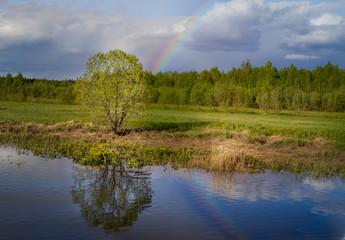 Волшебная радуга над рекой.