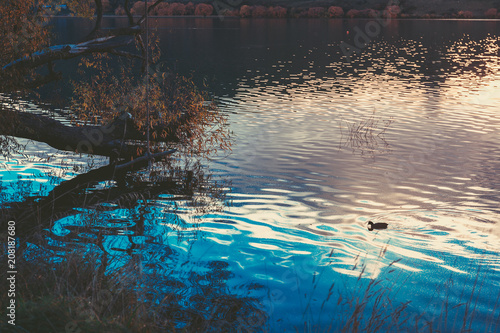 Fotobehang Grijze traf. sunset in Lake Hayes, Queenstown New Zealand landscape