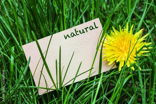 Fotobehang Groene Natural