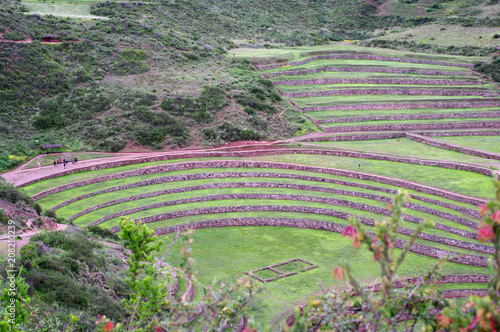Fotobehang Olijf Terrasses de Moray -5