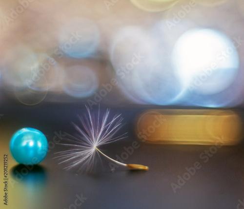 Canvas Paardenbloemen Dandelion seeds with bead and bokeh