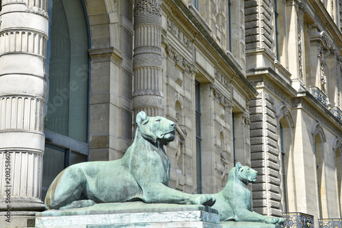 Canvas Lion Statues de lions