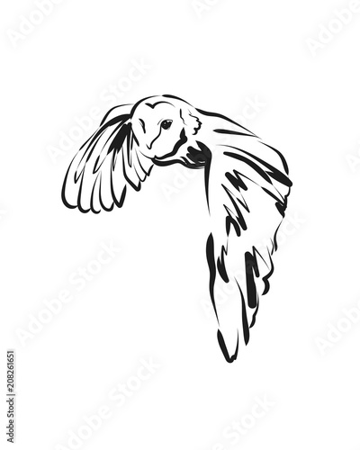 Aluminium Uilen cartoon Vector sketch flying owl