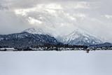 Winter in Bavaria.. - 208274401