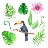 Watercolor set with tropical leaves and toucan - 208279270