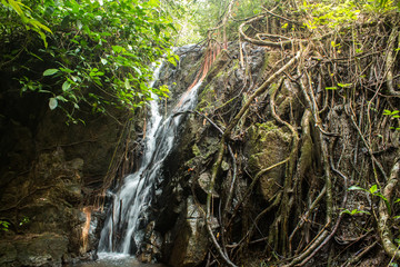 Waterfall Ton Sai in the forest phuket Thailand. Tropical zone Thailand Southern © surat