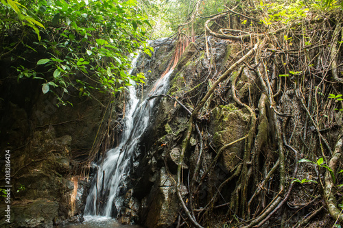 Waterfall Ton Sai in the forest phuket Thailand. Tropical zone Thailand Southern - 208286424