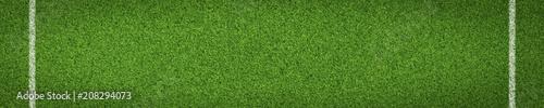 Rasen Hintergrund / schmal - 208294073