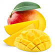 Leinwanddruck Bild - Mango leaf isolated