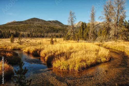 Canvas Honing Mountain Stream