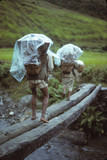 Porters carrying loads - 208319801