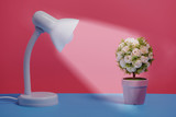 white table lamp and artificial flower pot on blue and pink paper , minimal style background - 208325835