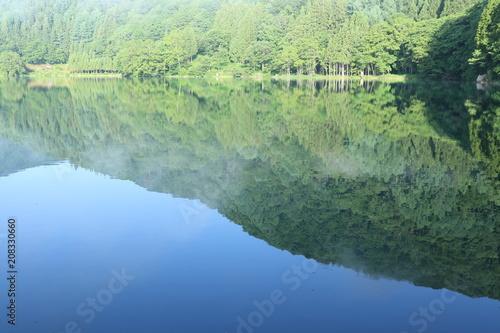 Fotobehang Olijf 長野県 大町市 霧の中綱湖