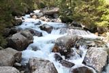 Kezmarska Biela voda (river) in Hight Tatras, Slovakia