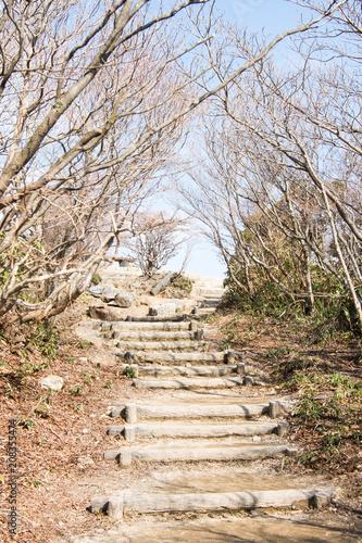 Steep Stairs In Mount Gozaisho