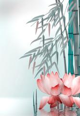 Seerosen, Teichrosen  mit Bambus im Wasser © i-picture