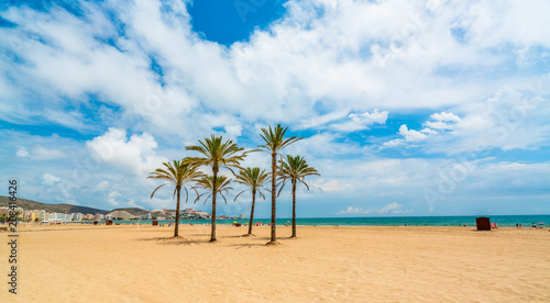 View from the seafront at the sea, palm trees and beach in the city of Cullera. District of Valencia. Spain